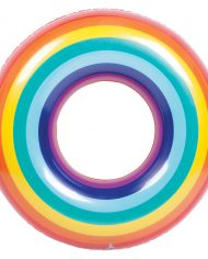 pool-ring-rainbow_top