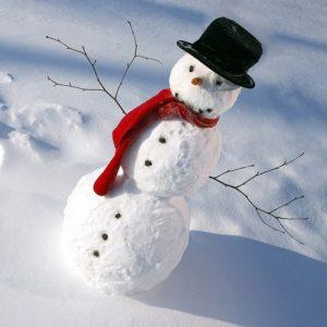 Snowmankit2